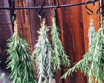 Organic Rosemary/ Fresh Rosemary/ Dried Rosemary/ Herb / Aromatic / Cooking