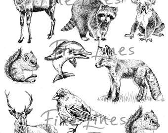 Animals digital stamps, Wild animals clipart, Scrapbooking stamps, Craft supplies, Transfer sheet, Fox, squirrel, bird, deer, dolphin