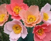 Perennial: POPPY 'ICELAND' 50+ Seeds, Easy To Grow, Pink,White,Yellow, Orange, Colorful, Beauty, Easy To Grow - High Germination, Fresh Seed