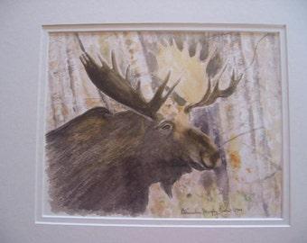 Maine Moose Watercolor Print by native Maine artist, Bernadine Evers