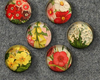 Vintage Flowers Glass Bubble Magnets - Set of 6 Magnets