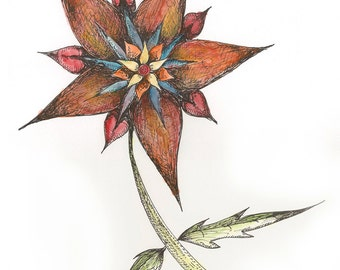 Shell Flower Watercolor Series Print #2