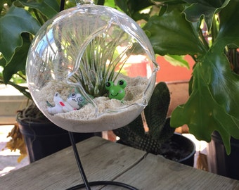 Air Plant Terrarium Kit with FREE STAND / Hanging Glass Terrarium Globe / Terrarium Glass Kit / Glass Globe Stand