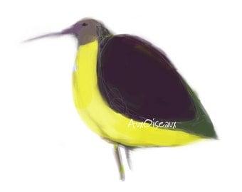 Oiseau jaune, mauve, vert, dessin numérique original, impression de qualité, type giclée. Cadre non-inclus.