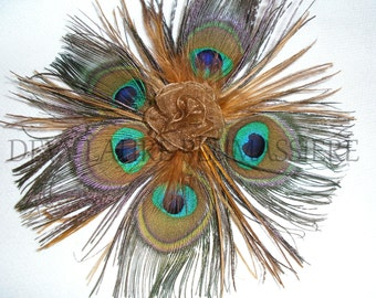 """PIN """"The star of Peacock"""" fascinating!"""