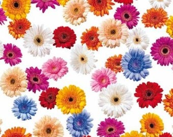 Oilcloth table cloth by the metre Gerbera flowers C147080