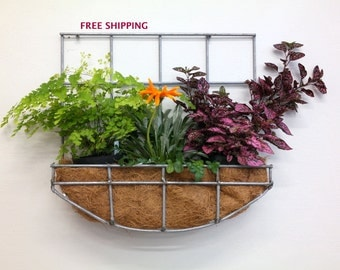 Wall hanging planter with curved bottom//Wire//Metal//Planter//Hanging planter//Outdoor planter