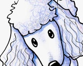 White Poodle Dog Breed Art Original ACEO Drawing