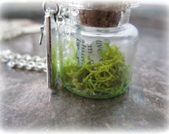 Miniature Bottle with Moss and Butterfly Terrarium