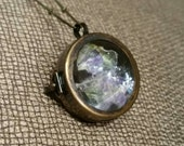 Domed Glass Locket with Antique Brass Hardware & Chain with Dried  Lavender Botanical Necklace