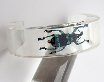 Transparent cuff lucite bracelet with real beetle