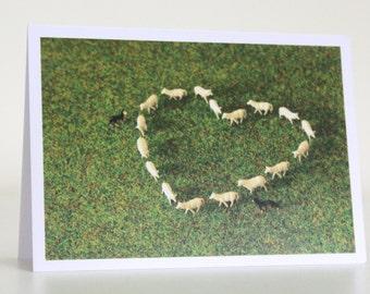 051 - love ewe - greeting card