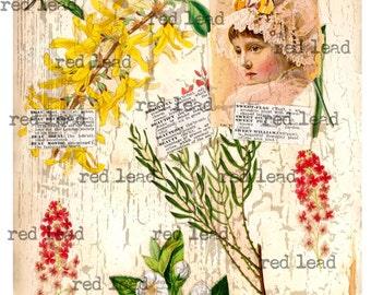 "Digital Antique Flowers Collage Sheet - 8-1/2"" x 11"" - Vintage Elements 72"