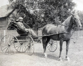 vintage photo Red Oak Iowa Young Man Harness Racing Buggy w Horse 1919
