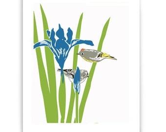 "Iris and Kinglets 8"" x 10"" Art Reproduction"