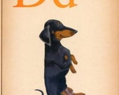 Dogs A-Z: Dachshund