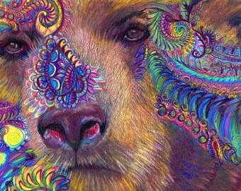 original art  drawing 16x20 colorful bear dreams zentangle