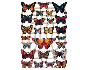 Germany Butterfly Paper Die Cut Lithograph Scraps  7324