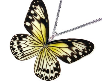 Real Butterfly Wing Necklace / Pendant (WHOLE Ideopsis Gaura Butterfly - W134)