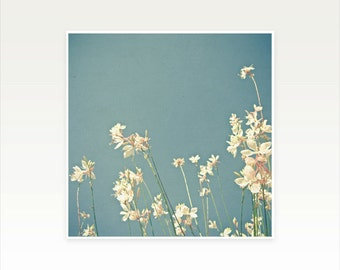 White Flower Photography, Summer Wall Art, Pastel Blue Decor, Bedroom Art, Floral - Blue Monday