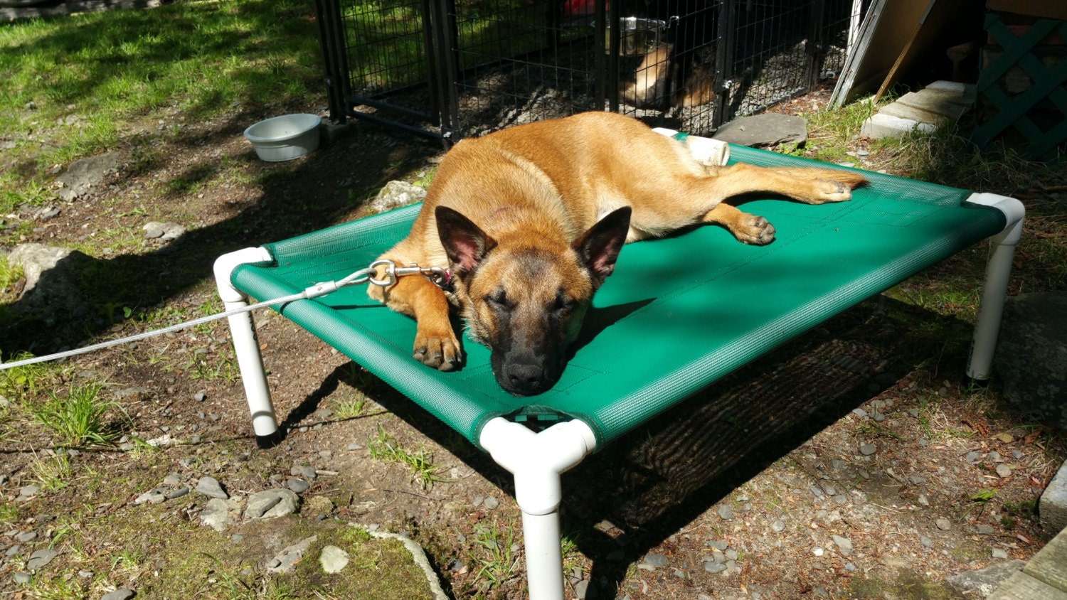 elevated bed dog bed outside beds kennel beds cat bed - 🔎zoom