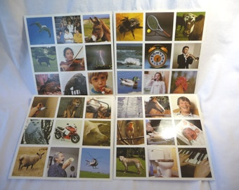 picture collage, scrapbooking supplies, random photos, laminated pictures, music pictures, animal pictures, people pictures, destash, art