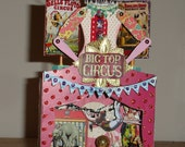 Circus Big Top Miniature Theatre~Shrine - Handmake - OOAK