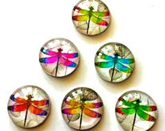 Magnets - Dragonflies - Set of 6 - 1 Inch Domed Glass Circles