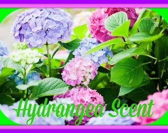 HYDRANGEA Scented Soy Wax Mets - Soy Tarts - Floral Scent - Wickless Candle Melts - Highly Scented - Hand Made In USA