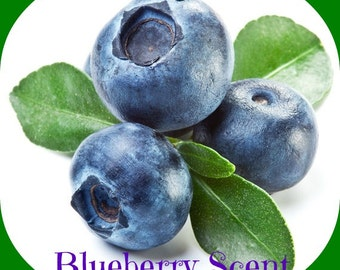 BLUEBERRY SCENTED Soy Wax Melts Tarts - Old Fashioned Fresh Picked Fruit - Wickless Candle Air Freshener - Max Fragranced - Handmade in USA