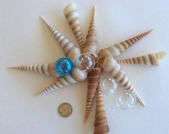 BEACH DECOR, 12 pieces, terebra turritella, wedding decor, coastal decor, nautical decor, jewelry and crafting supply