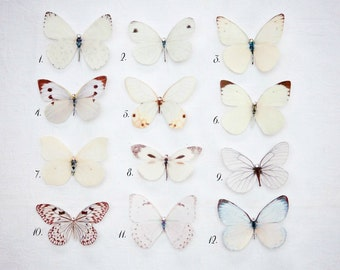 Hand cut silk butterfly hair clips with Swarovski Crystal Wedding Prom Bridesmaid Ethereal Garden Party - Pales  Pick and mix selection of 5