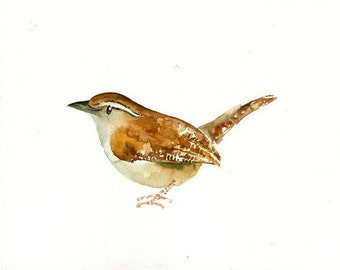 CAROLINA WREN Original watercolor painting 10x8inch