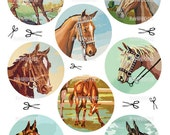 Digital Download Vintage Paint By Number Horses - photo reproductions - pbn western childs room decor