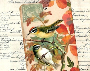 Bird Tags, Nature Tags, Bird Gift Tags, Bird Lover, Vintage Style