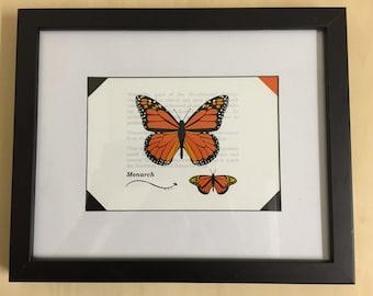 Specimen Art Print: Monarch Butterfly