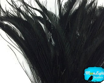 Peacock Feathers, 5 Pieces - BLACK BLEACHED Peacock Swords Cut Feathers : 3917