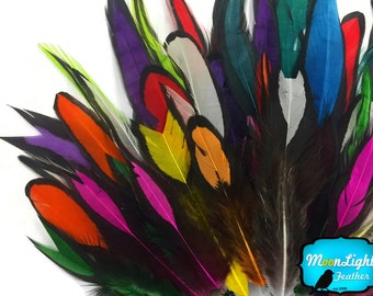 Laced Feathers, 1 Pack - Imperfect Colorful Mix Laced Hen Rooster Cape Saddle Feather 0.05 Oz. : 3932