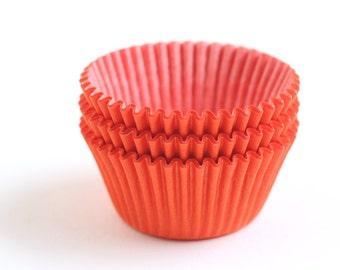 Orange Cupcake Liners / Baking Cups - BULK - 100 count