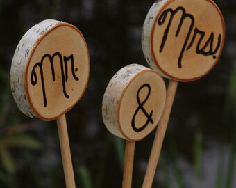 Rustic Wedding Cake Topper Birch Branch Slices Mr & Mrs