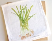 Deluxe Green Onion Tea Towel, Watercolor Herb Dish Cloth