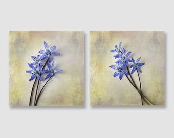 Blue Flower Print Set, Blue Spring Flower Set, French Country Home Decor, Rustic Blue Flower Home Decor, Country Farmhouse Decor 5x5