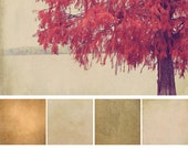 Artist Texture Collection: Vol 10