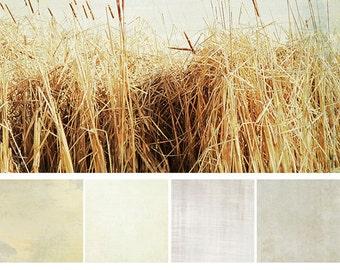 Photoshop Textures: White Washed