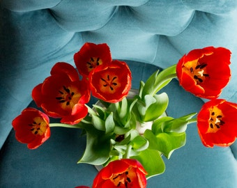 Teal Chair + Red Tulips (photograph, various sizes)