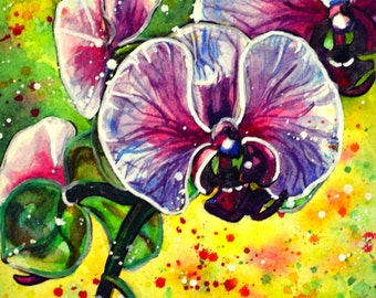 Pink Orchid - original watercolour painting
