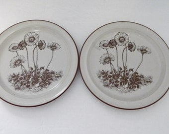Noritake Stoneware Desert Flowers Made in Japan 8341 Two Luncheon / Salad Plates