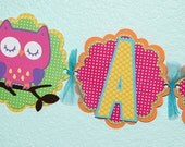 Owl name banner - multi colored bright - Birthday -  Baby Shower - Banner - (6 characters and an owl at each end)