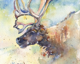 Reindeer in the snow painting in watercolor