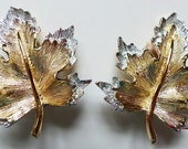 Sarah Coventry Clip On Earrings Nature's Choice Gold on Silver Maple Leaf Vintage 60s